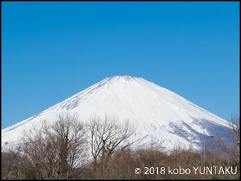 足柄SA(下り)から望む富士山