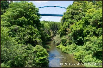 養老渓谷の渓谷橋