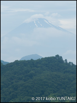 大仁ホテルからの富士山